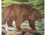 JVD Tierbildauflage Bear